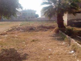 قرية محمد صلاح