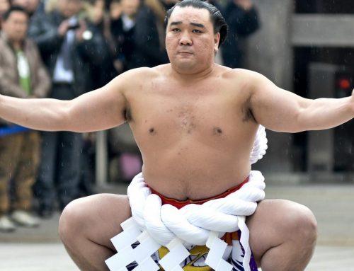 شوبوشى مصارع سومو يابانى 28 عاما