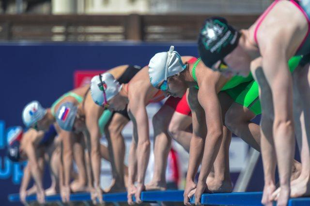مونديال السباحة