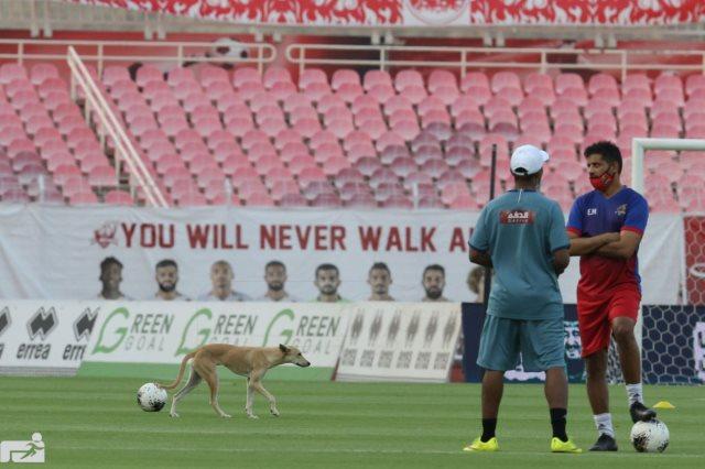 كلب يقتحم مباراة الشباب والوحدة