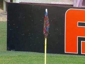 http://www.superkora.football/News/9/174050/أسراب-النحل-تهاجم-ملعب-مباراة-في-الدوري-البرازيلي-فيديو